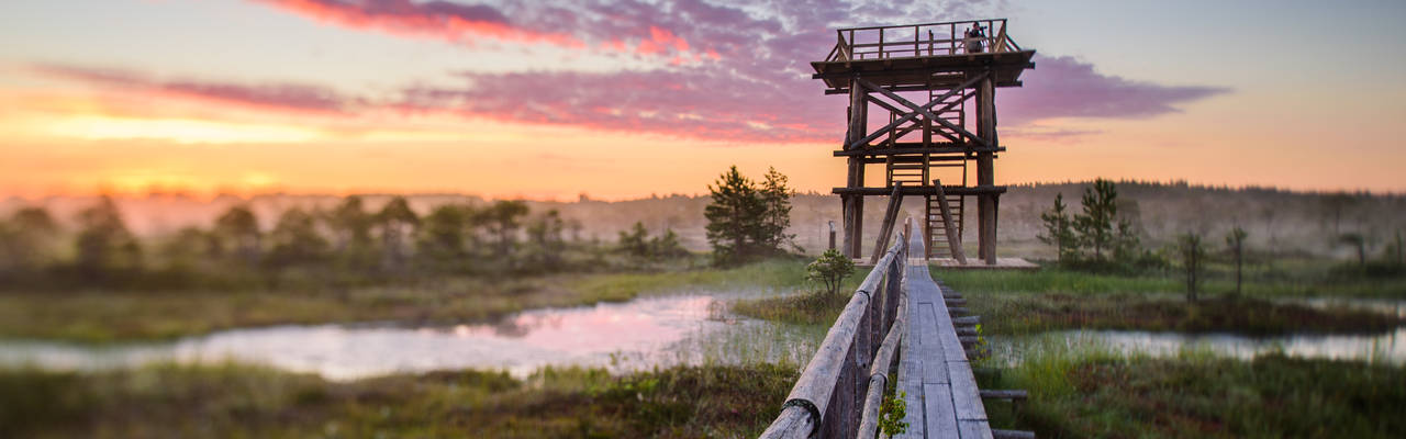 Dag 4 Lahemaa Nationaal Park - Tartu