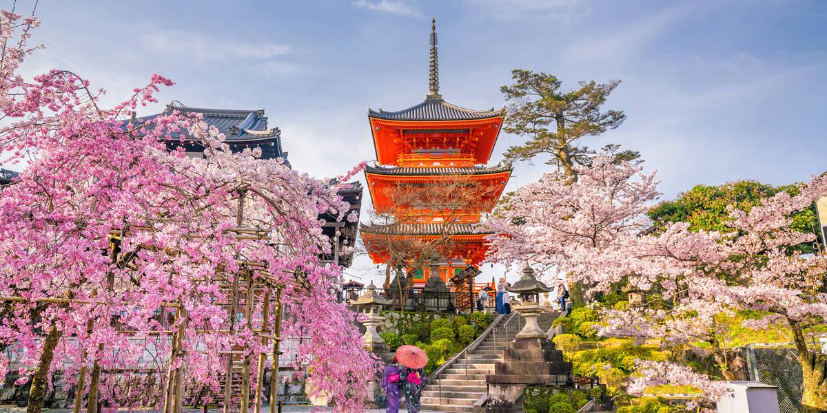 Dag 5 Kyoto