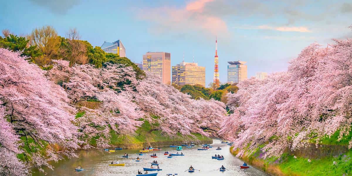 Dag 21 Tokio